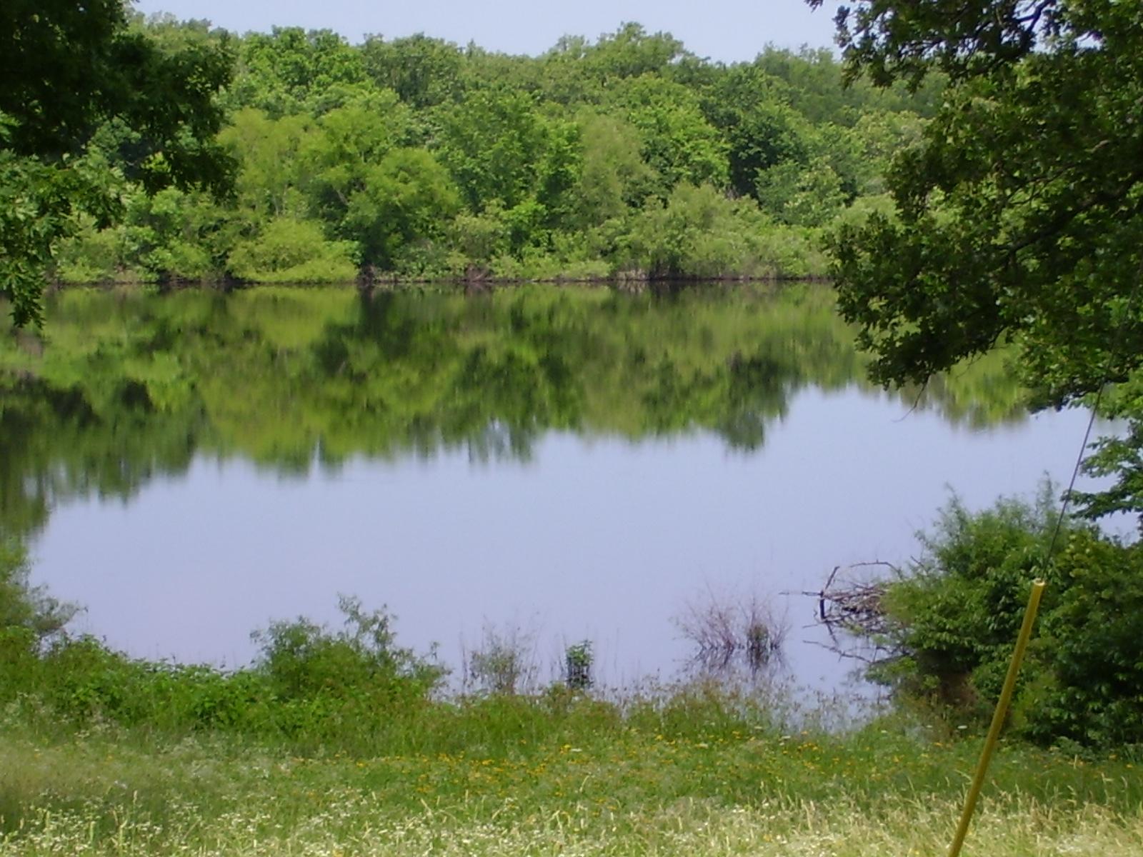 1 Lake Of The Woods Macks Creek, MO 65786